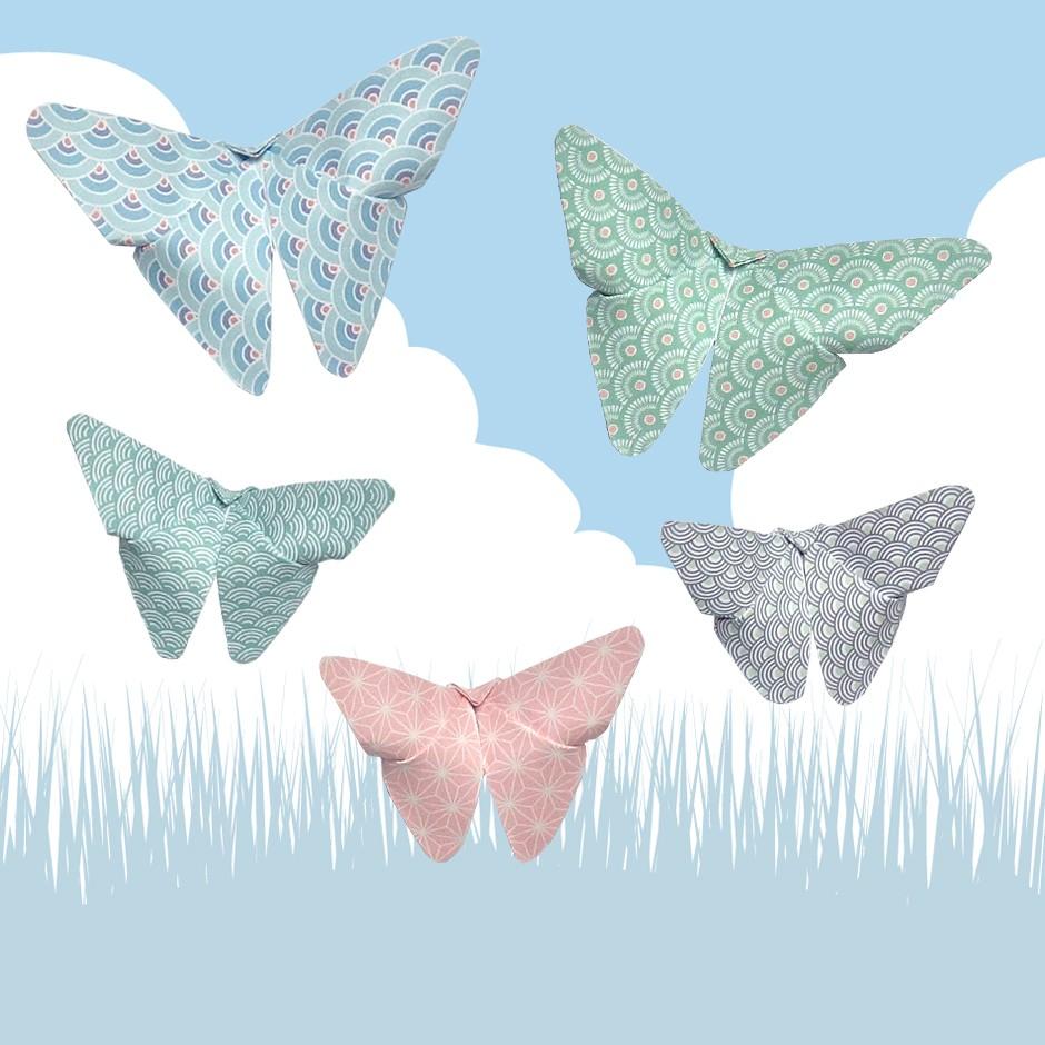 Les beaux papillons